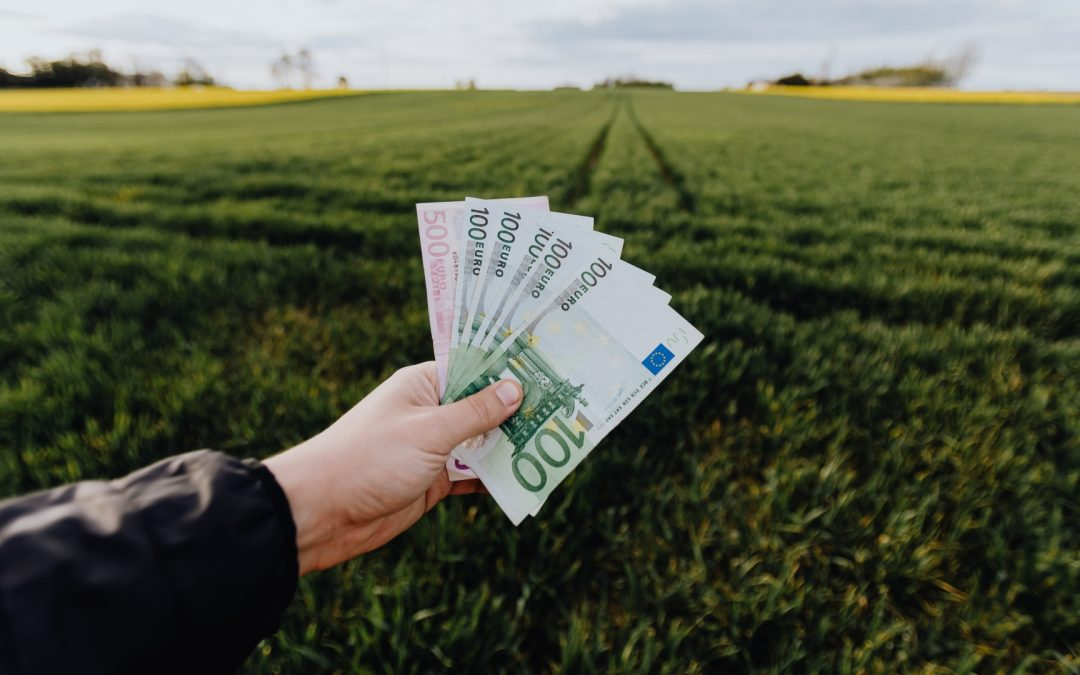 Grants For Starting A Business In Ireland